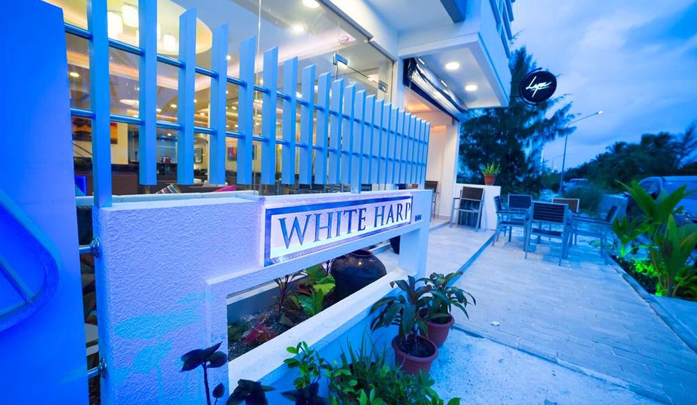 The White Harp Beach Hotel